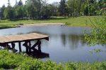 Разведение рыбы на дачном участке – Пруд для разведения рыбы — советы по обустройству водоема и подготовке к зиме, видео